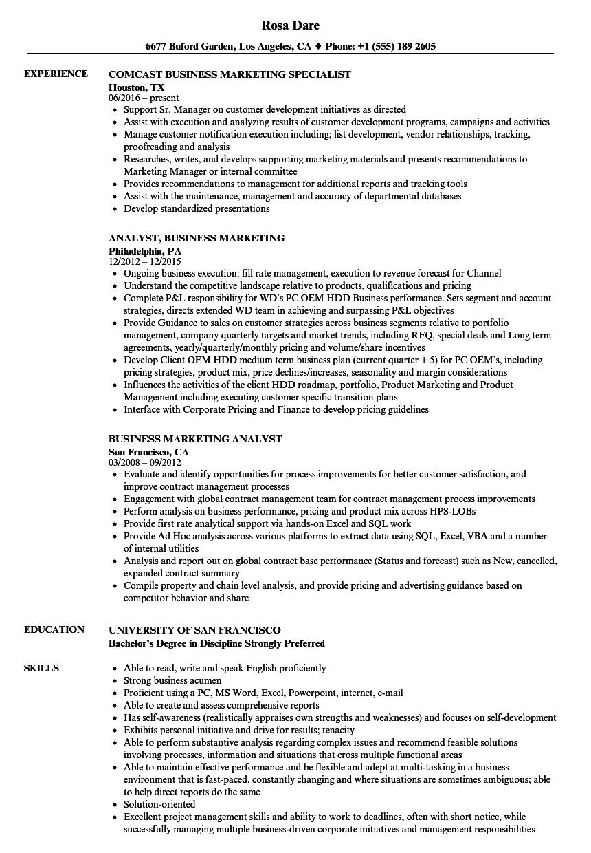 Download Business Marketing Resume Sample As Image File