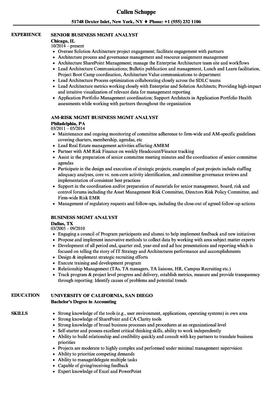 senior business analyst resume samples