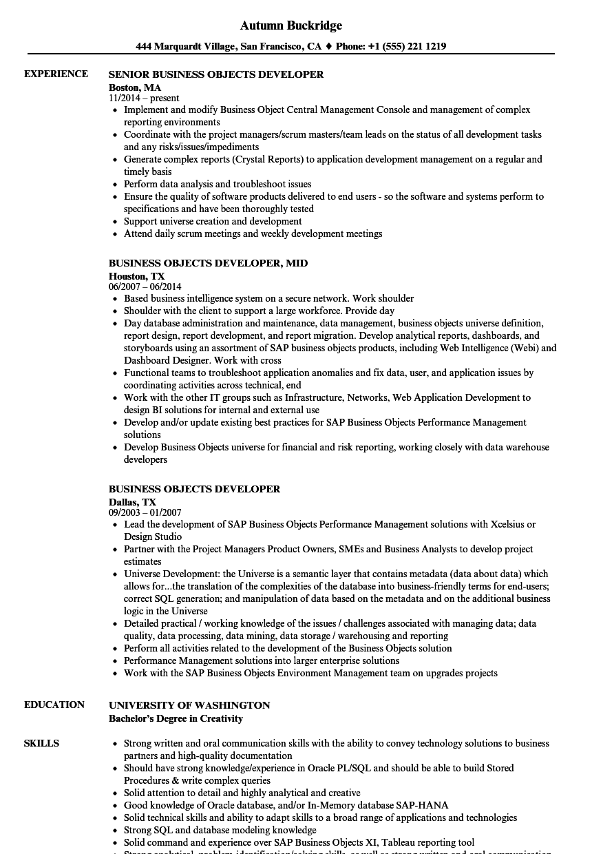 Business Objects Developer Resume Samples | Velvet Jobs