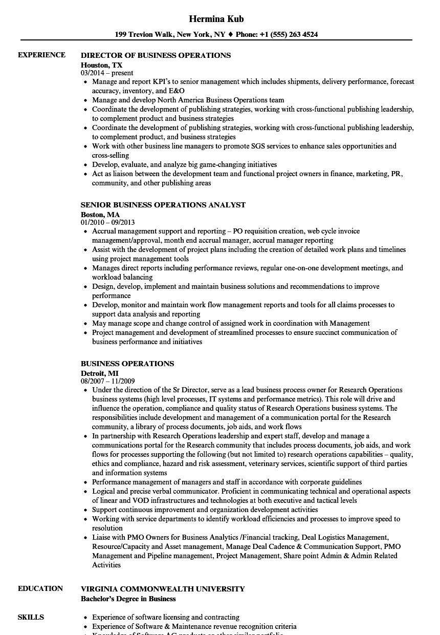 Velvet Jobs  Sample Business Resume