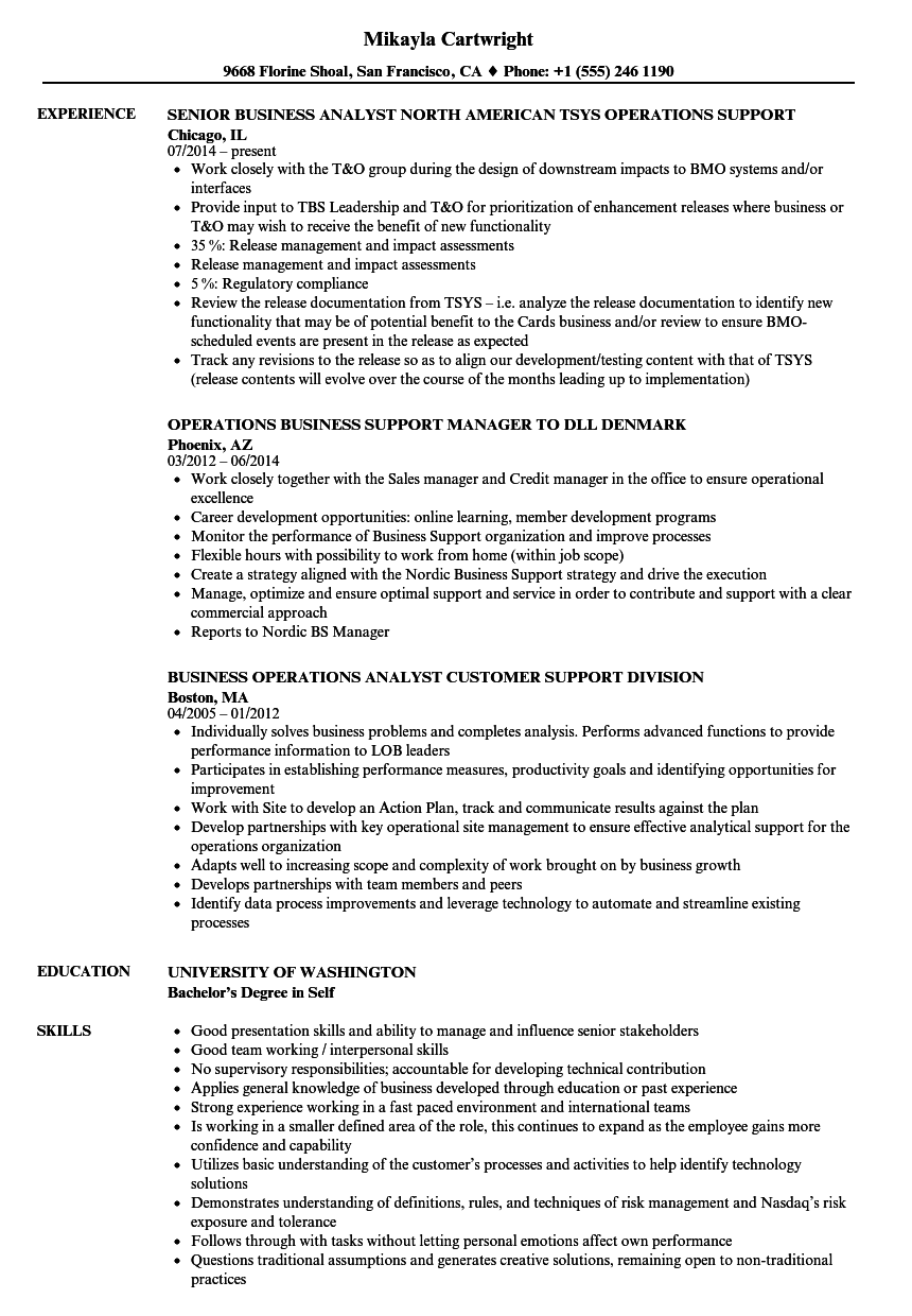business operations support resume samples