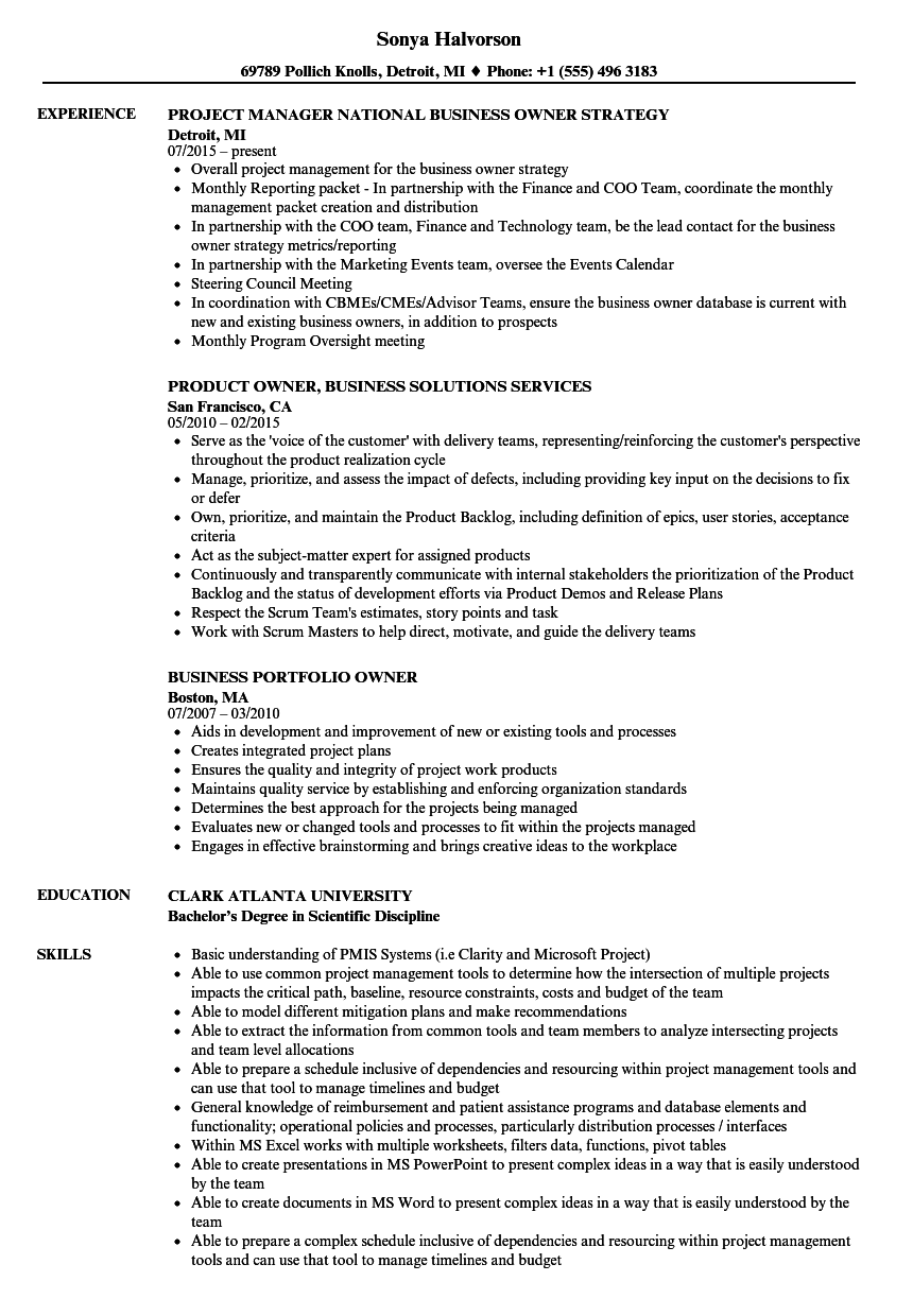 Download Business Owner Resume Sample As Image File