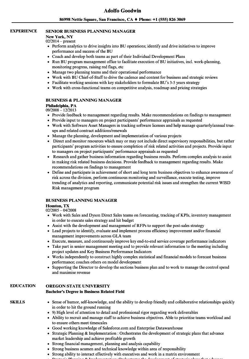 business planning manager resume samples