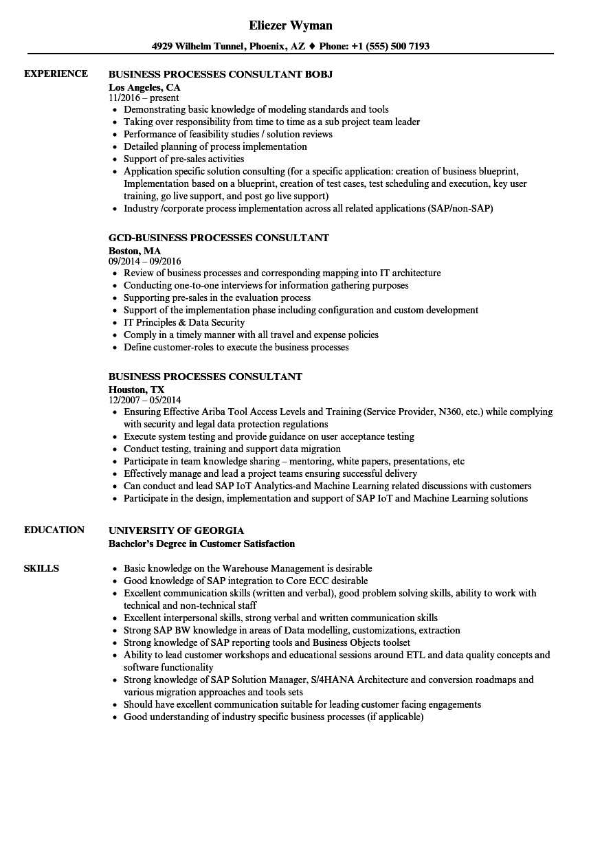 business processes consultant resume samples