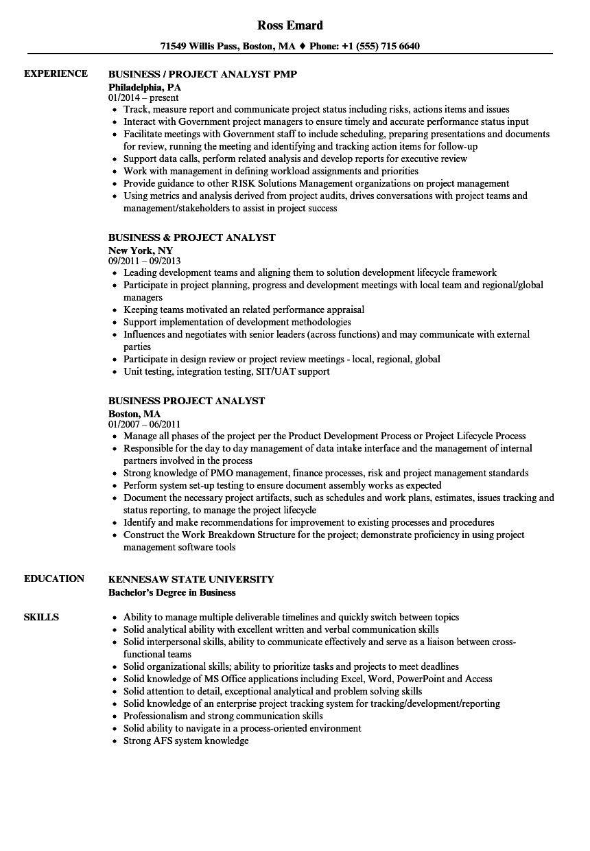 business project analyst resume samples
