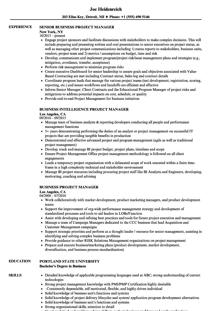 Business Project Manager Resume Samples Velvet Jobs