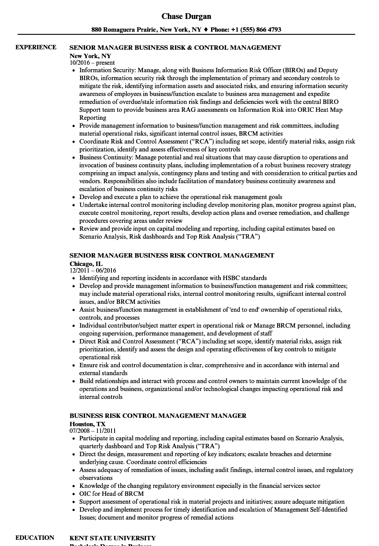 business risk control management resume samples
