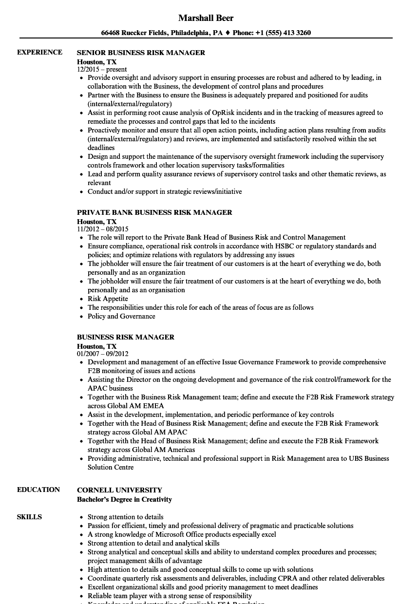 business risk manager resume samples