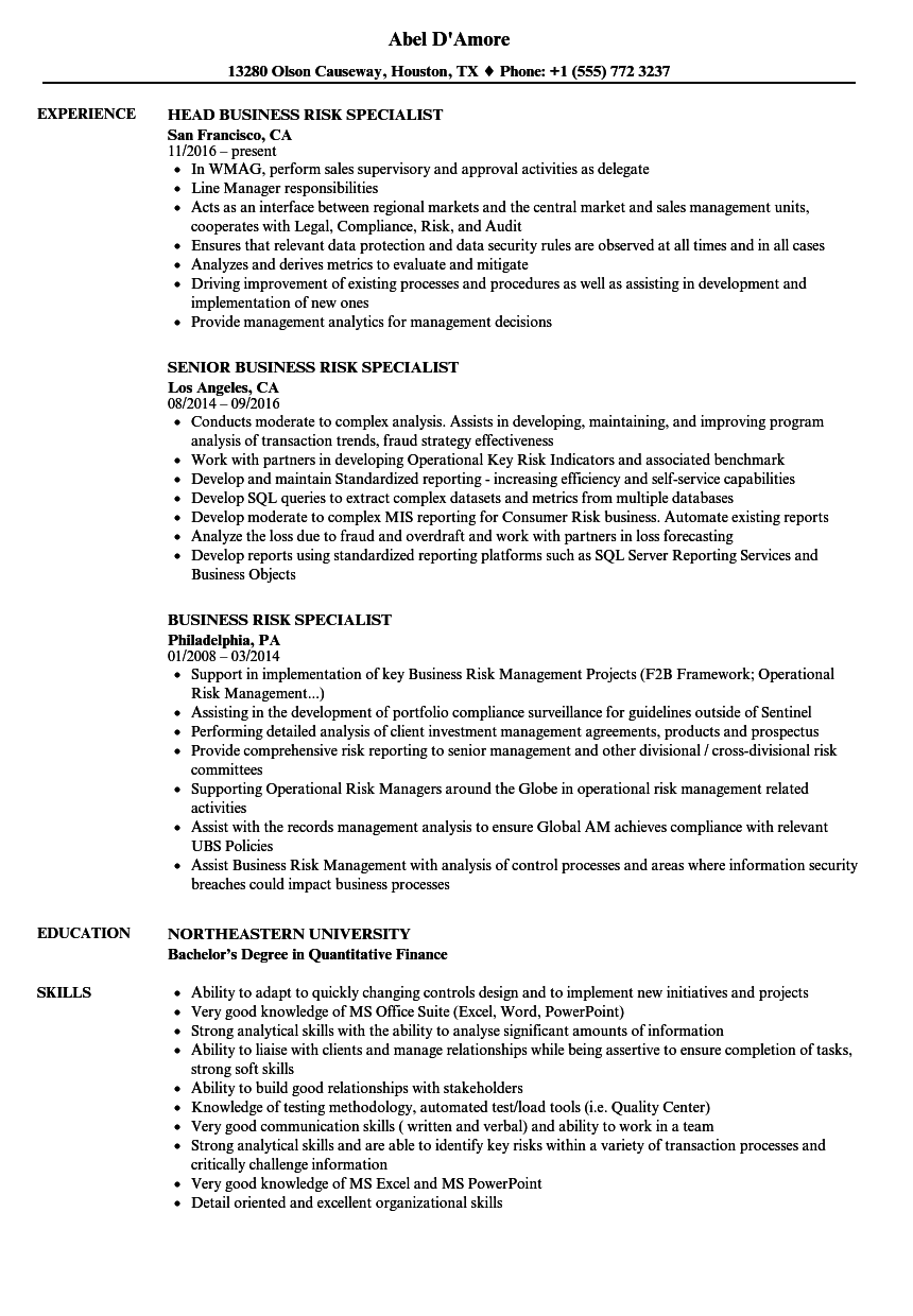 business risk specialist resume samples