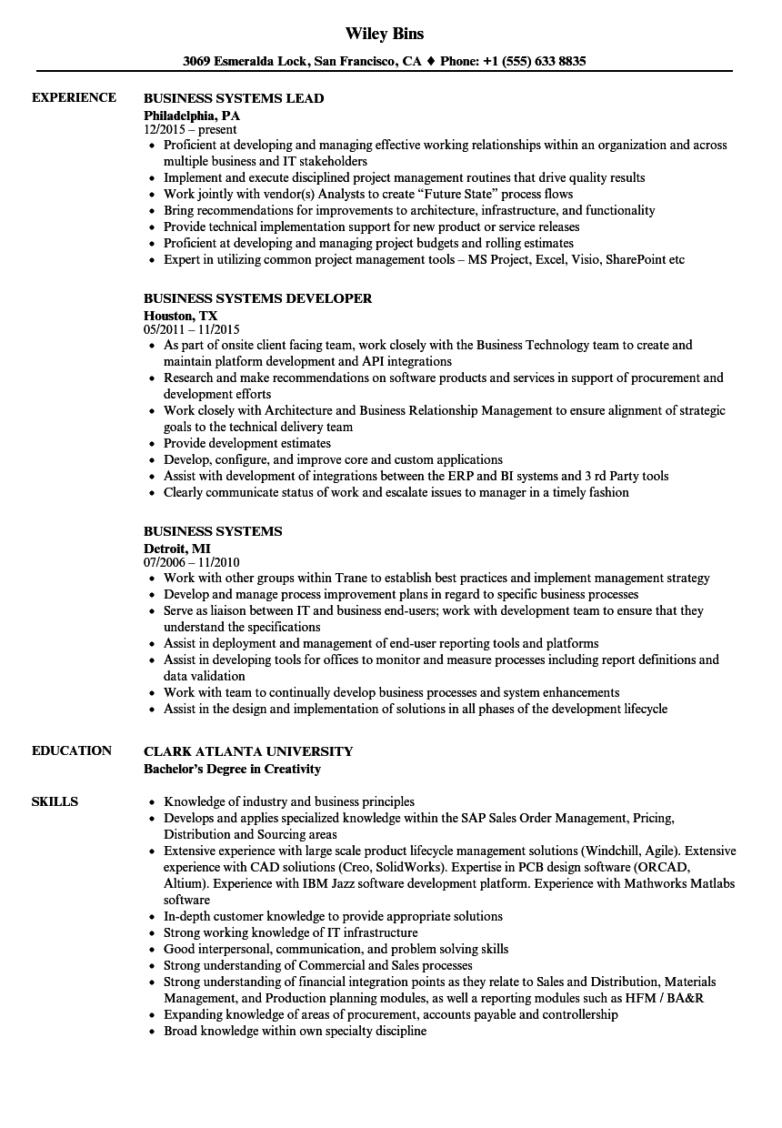 business systems resume samples