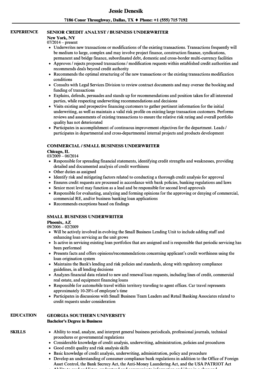Download Business Underwriter Resume Sample As Image File