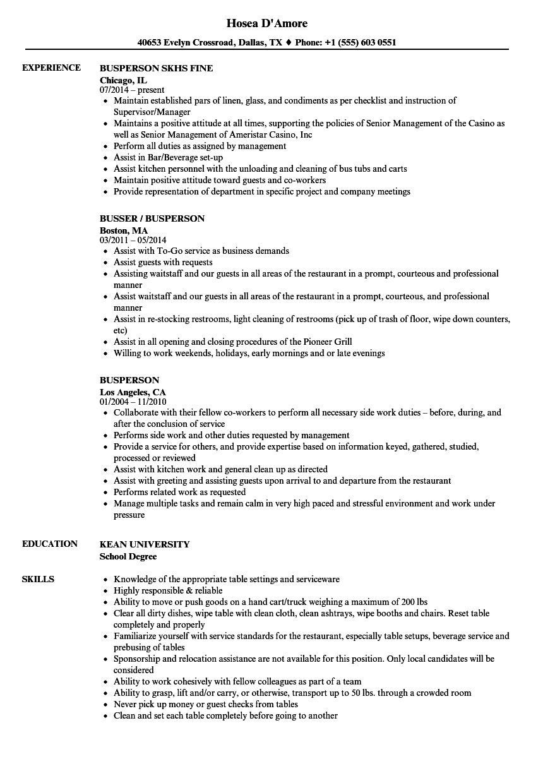 busperson resume samples