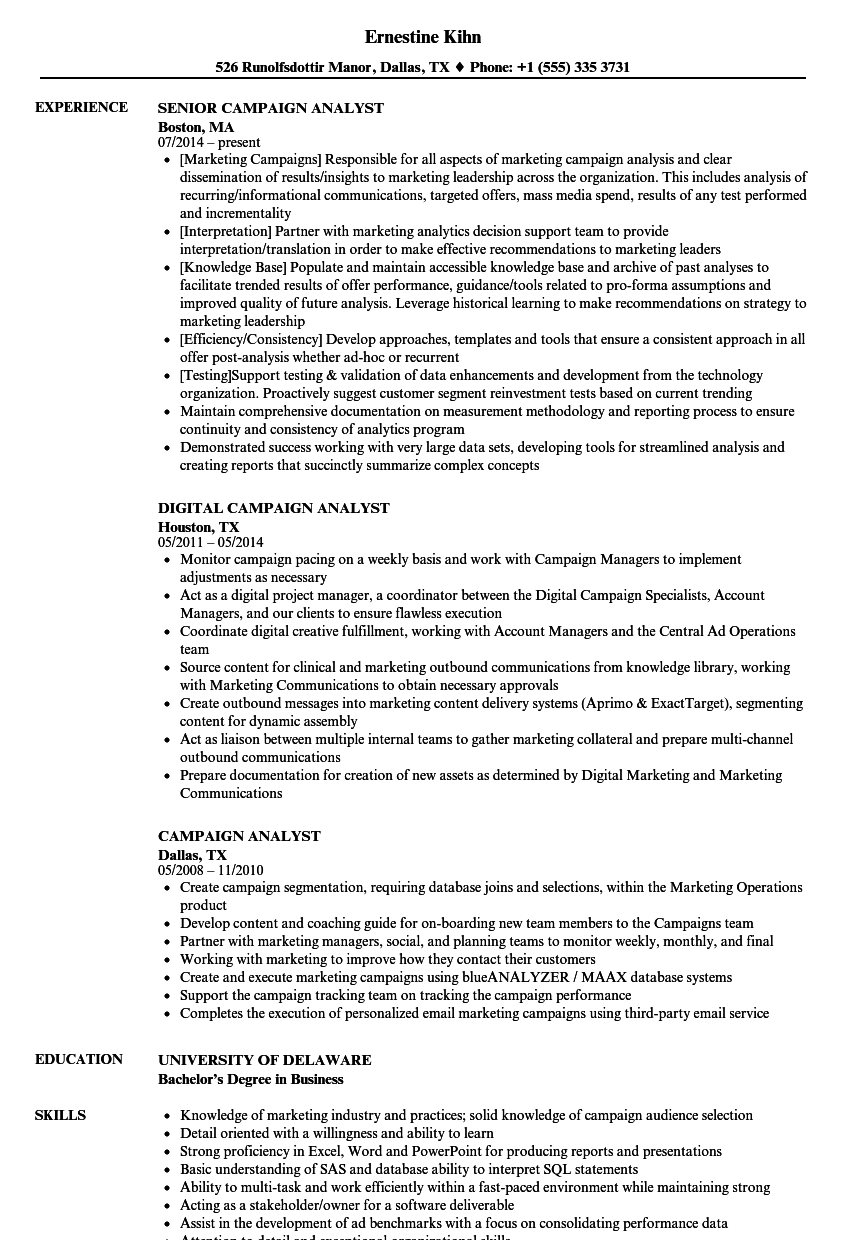 campaign analyst resume samples