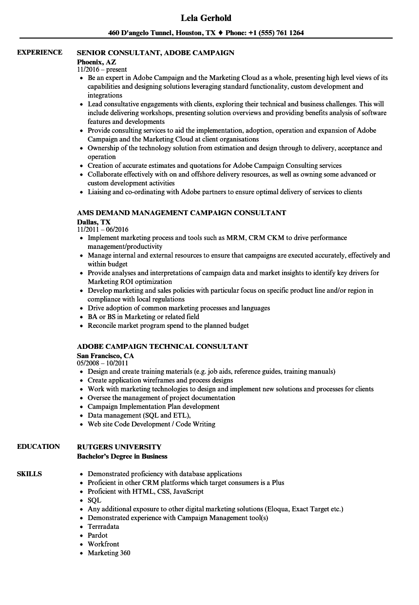 Campaign Consultant Resume Samples | Velvet Jobs