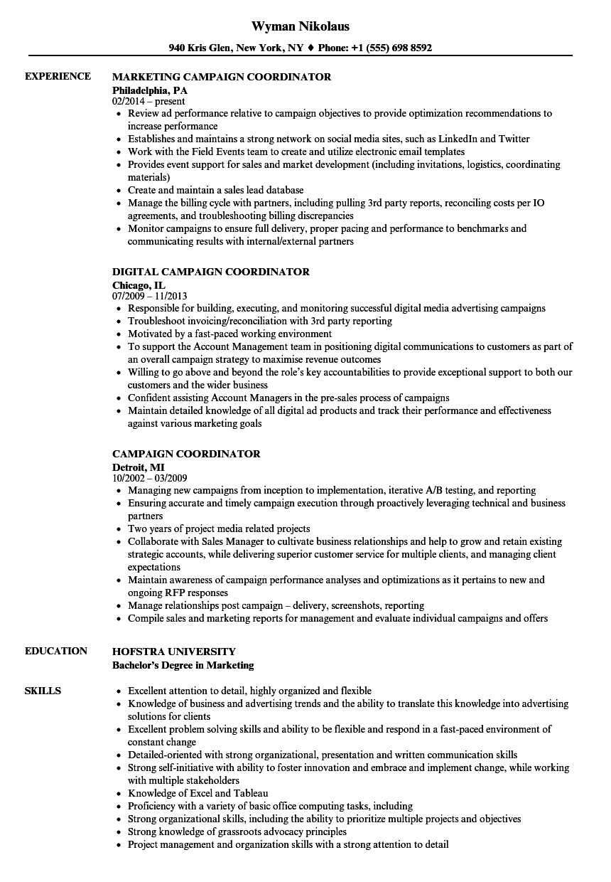 campaign coordinator resume samples