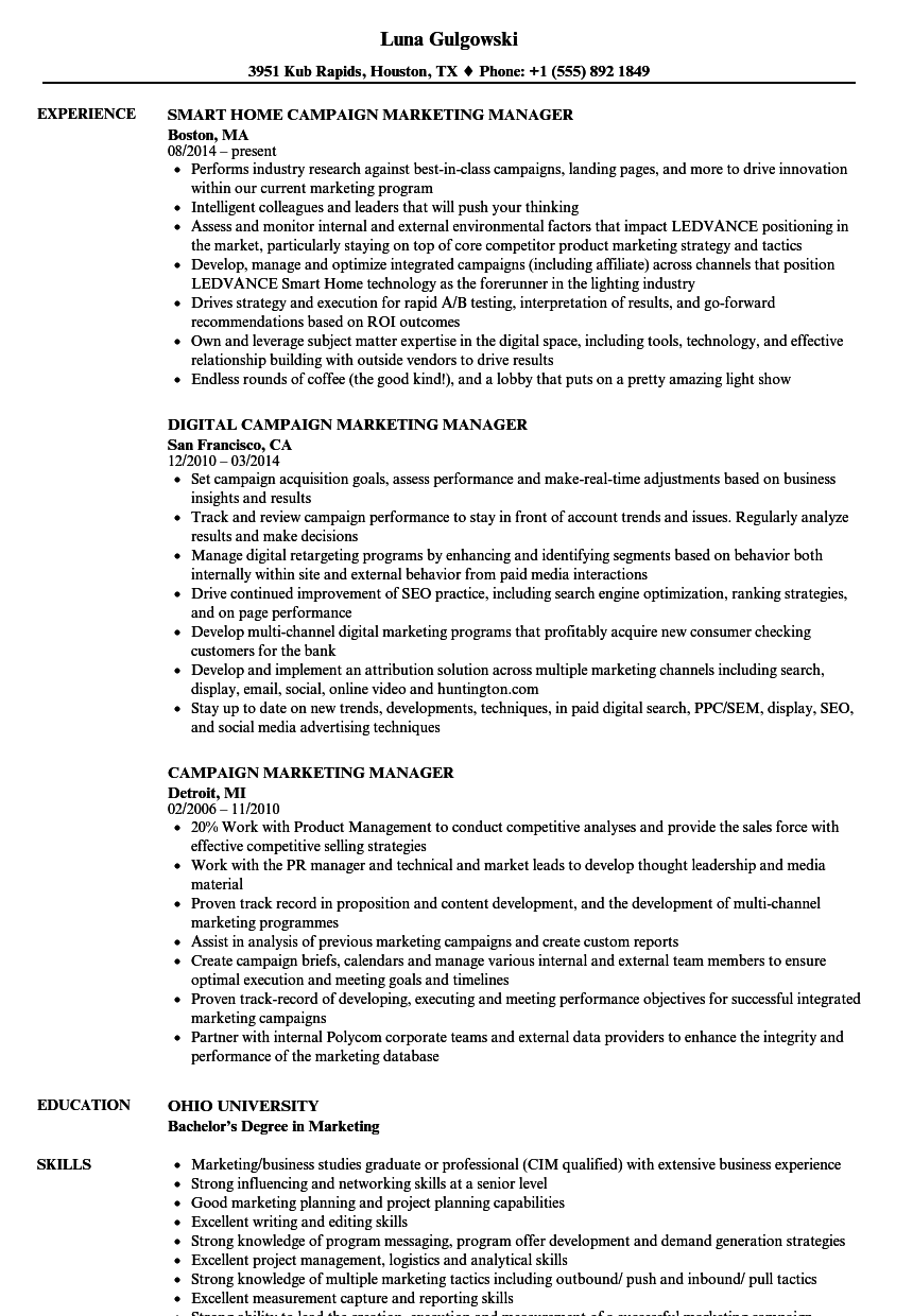 campaign marketing manager resume samples