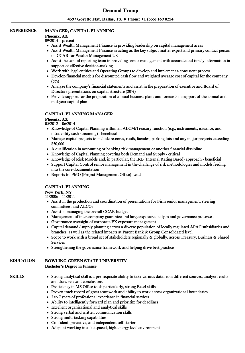 Capital Planning Resume Samples | Velvet Jobs