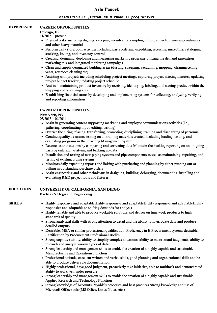 Career Opportunities Resume Samples | Velvet Jobs