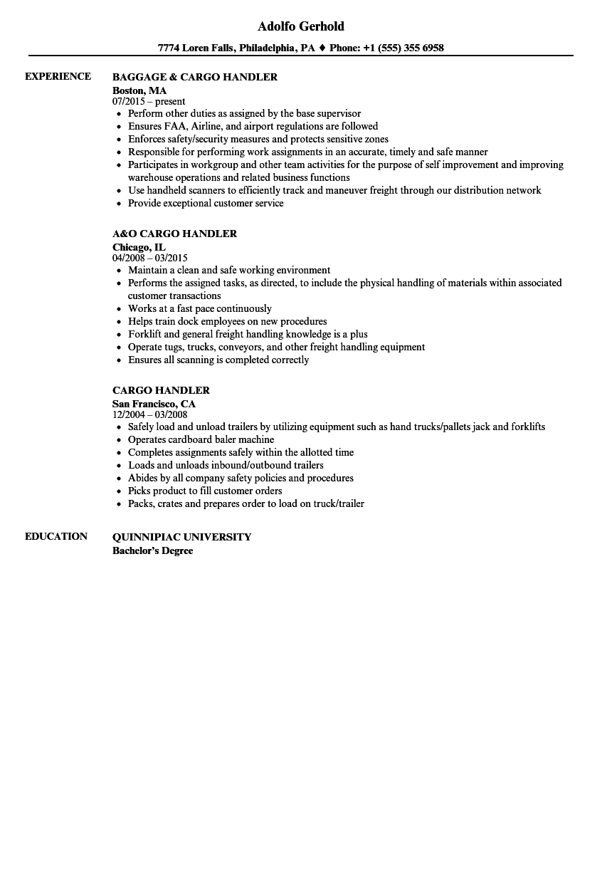 Cargo Handler Resume Samples | Velvet Jobs