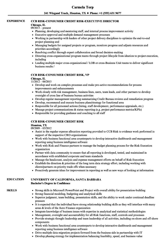 Ccb Risk Consumer Credit Resume Samples Velvet Jobs