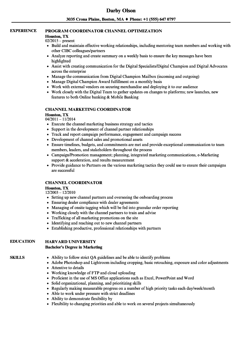channel coordinator resume samples