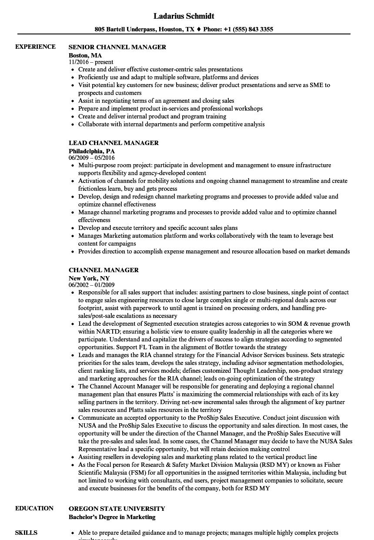 Channel Manager Resume Samples | Velvet Jobs