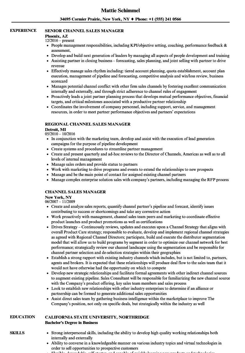 channel sales manager resume samples velvet jobs