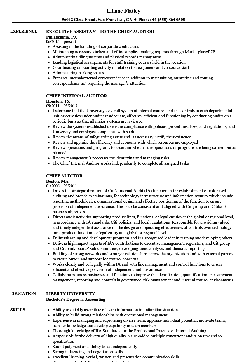Chief Auditor Resume Samples | Velvet Jobs