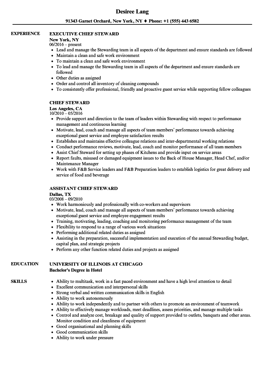 chief steward resume samples