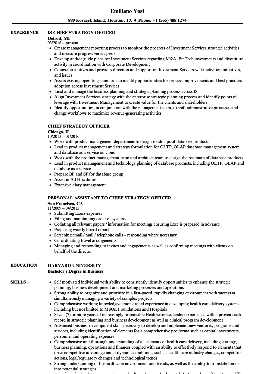 Chief strategy officer resume samples velvet jobs download chief strategy officer resume sample as image file yelopaper Image collections