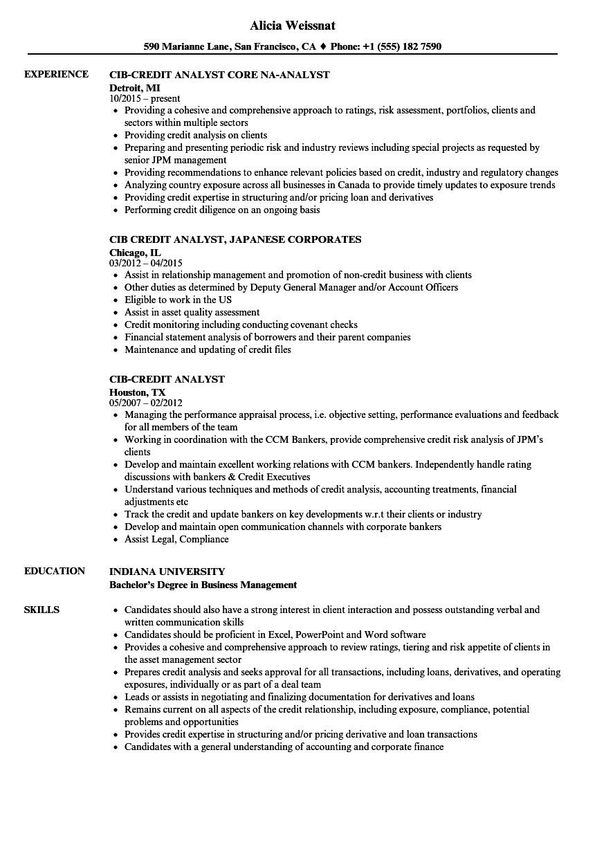 download cib credit analyst resume sample as image file - Sample Credit Analyst Resume