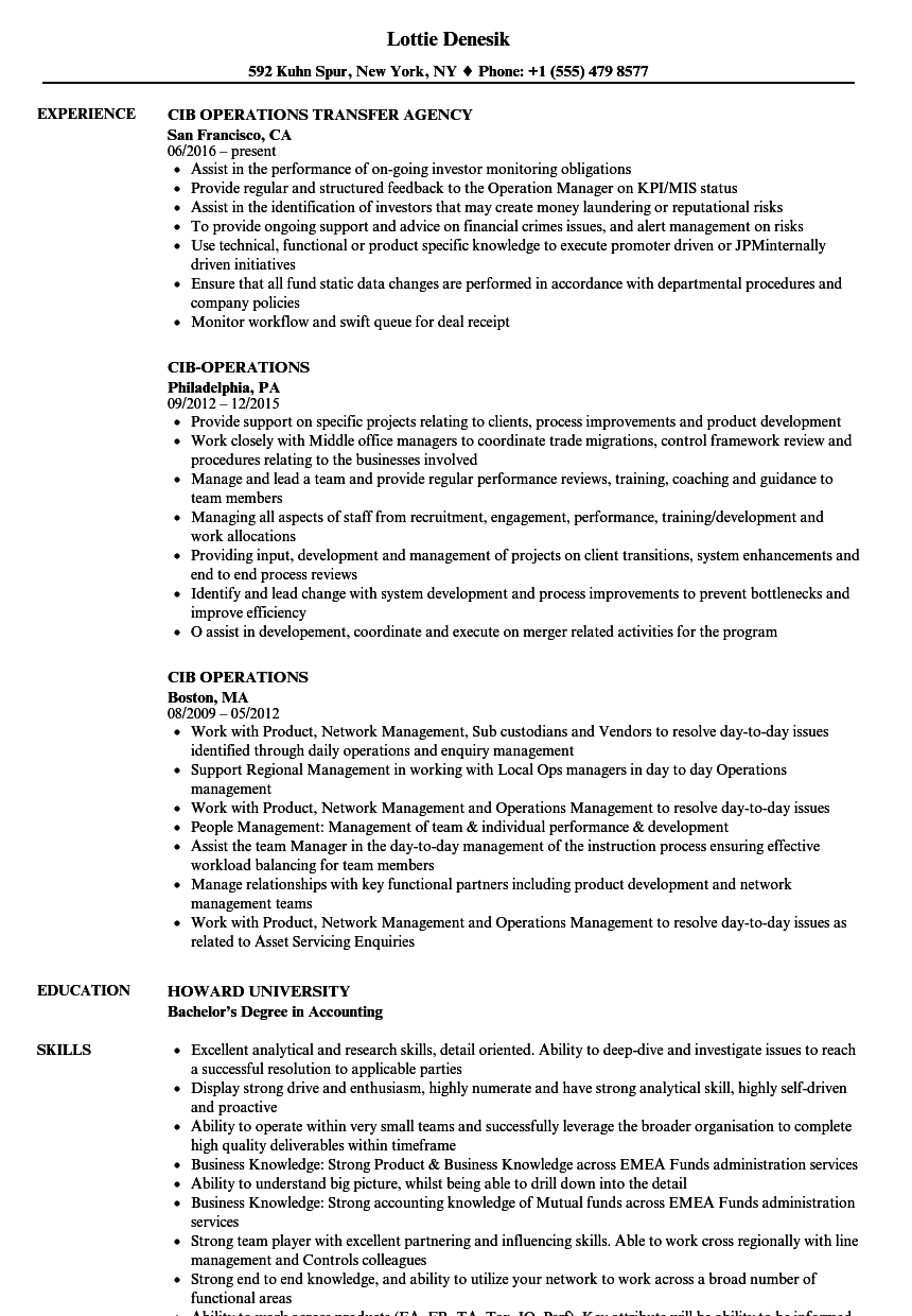 enterprise risk management resume headlines sle resume