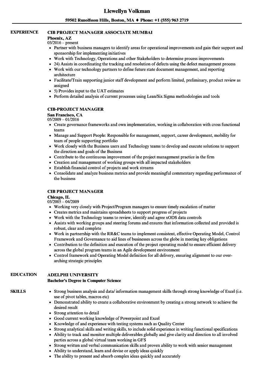 resume Escalation Manager Resume cib project manager resume samples velvet jobs download sample as image file