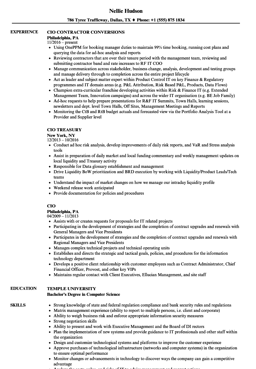 cio resume samples velvet jobs