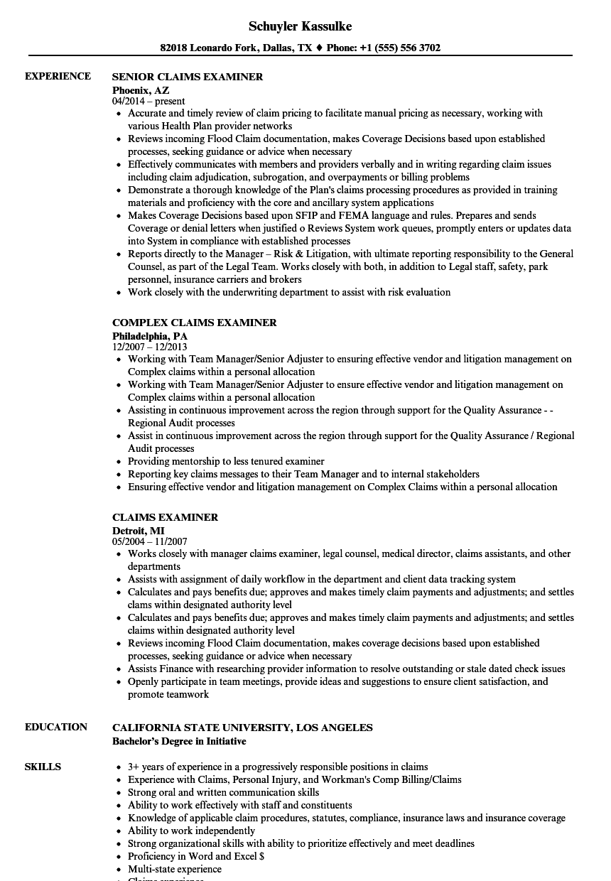 Download Claims Examiner Resume Sample As Image File