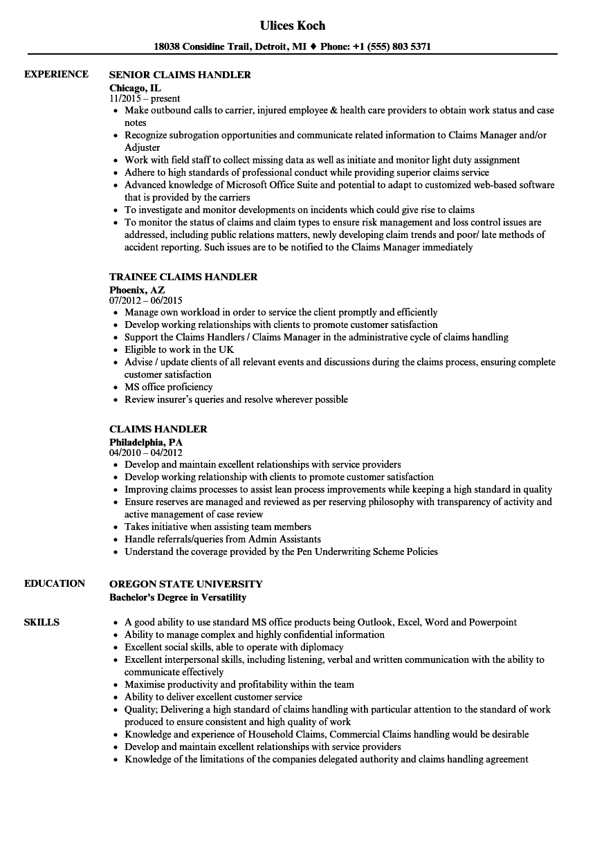 Claims Handler Resume Samples | Velvet Jobs