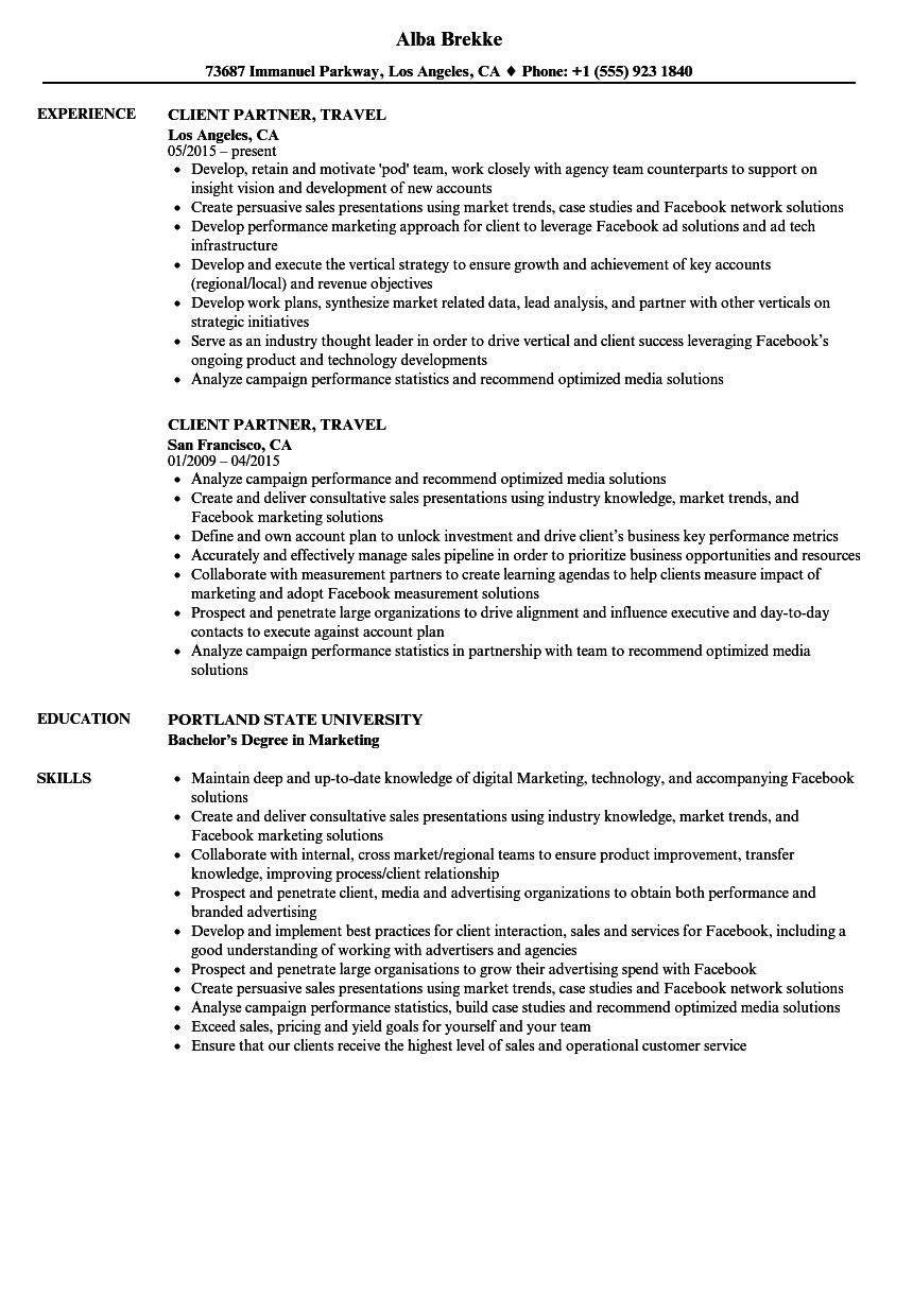 Client Partner Travel Resume Samples Velvet Jobs