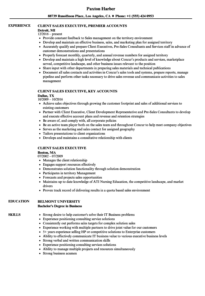 client sales executive resume samples velvet jobs - Resume Format For Sales Executive