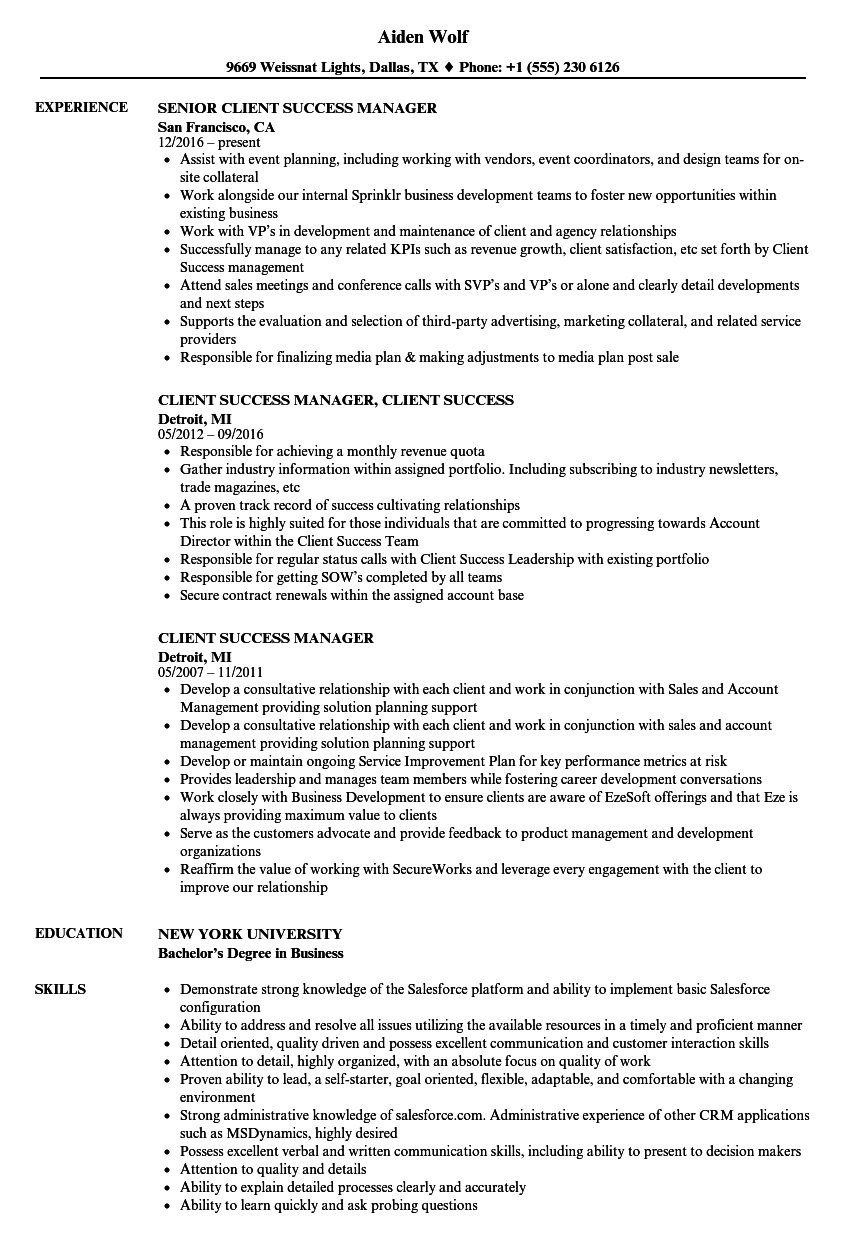 Download Client Success Manager Resume Sample As Image File