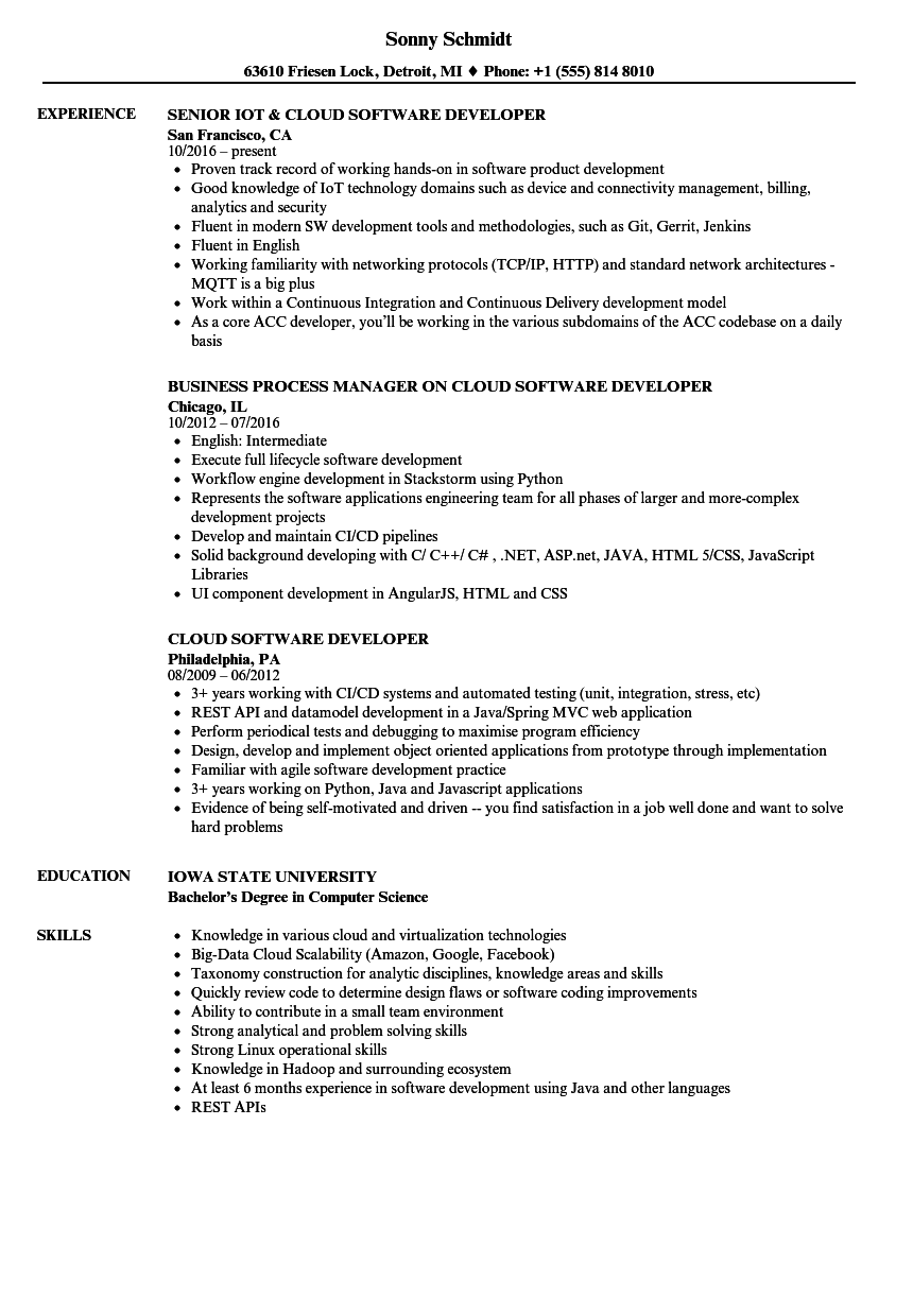 Cloud Software Developer Resume Samples | Velvet Jobs