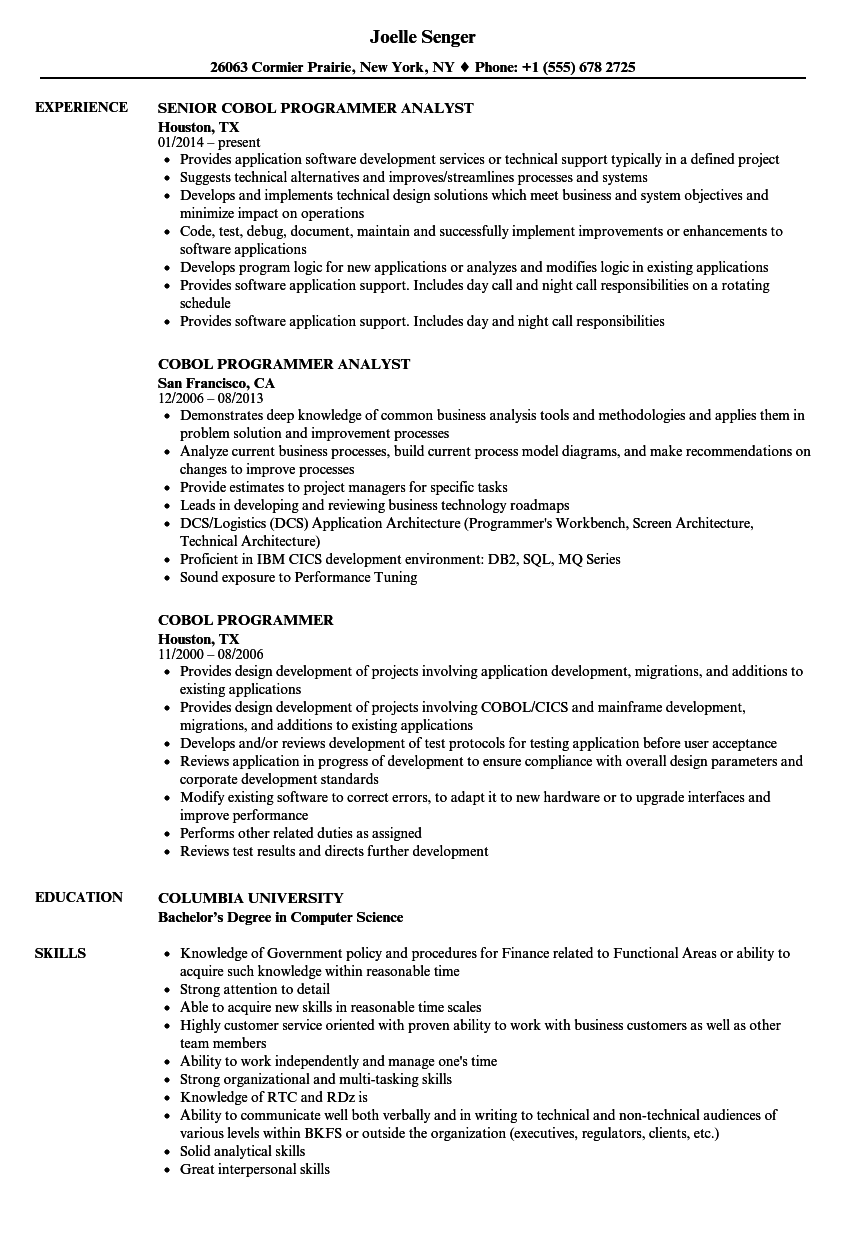 Cobol Programmer Resume Samples | Velvet Jobs