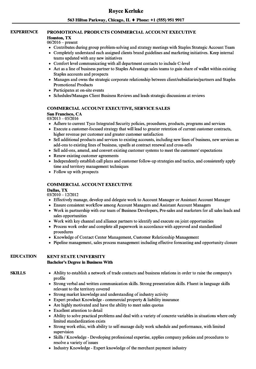 commercial account executive resume samples
