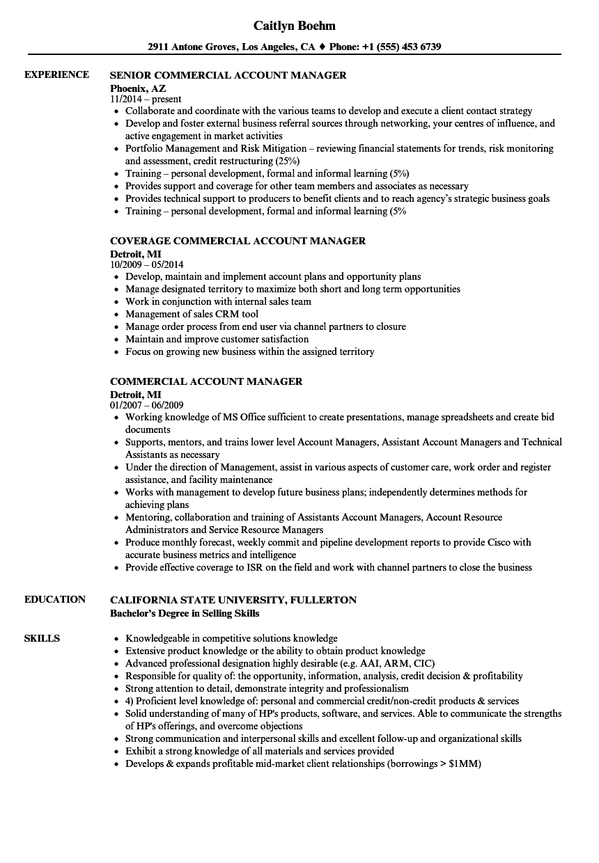Download Commercial Account Manager Resume Sample As Image File