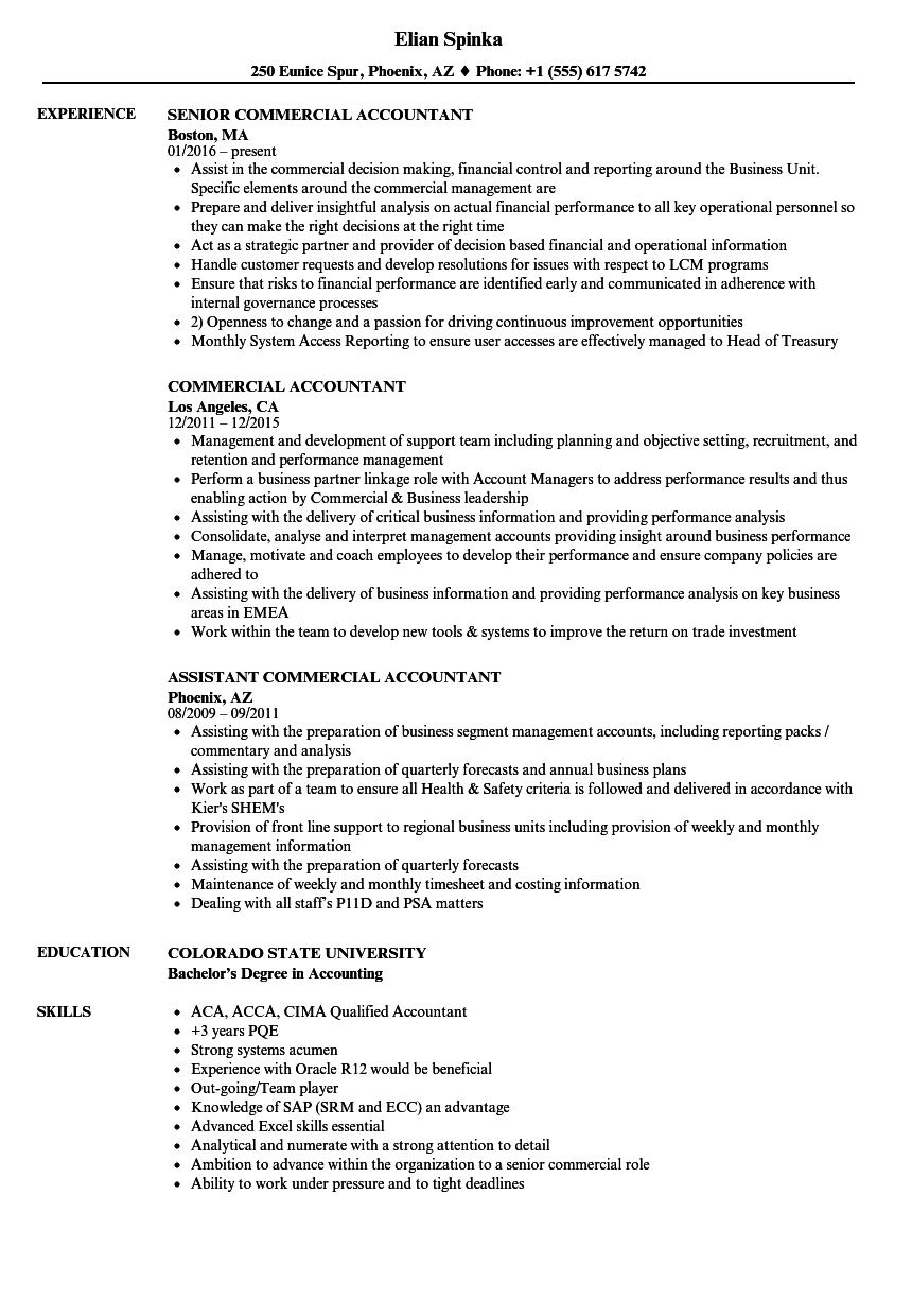 commercial accountant resume samples