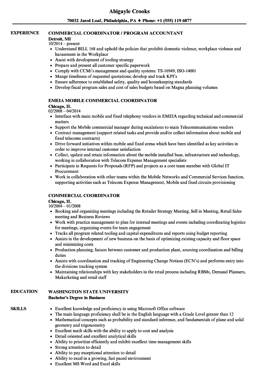 Download Commercial Coordinator Resume Sample As Image File