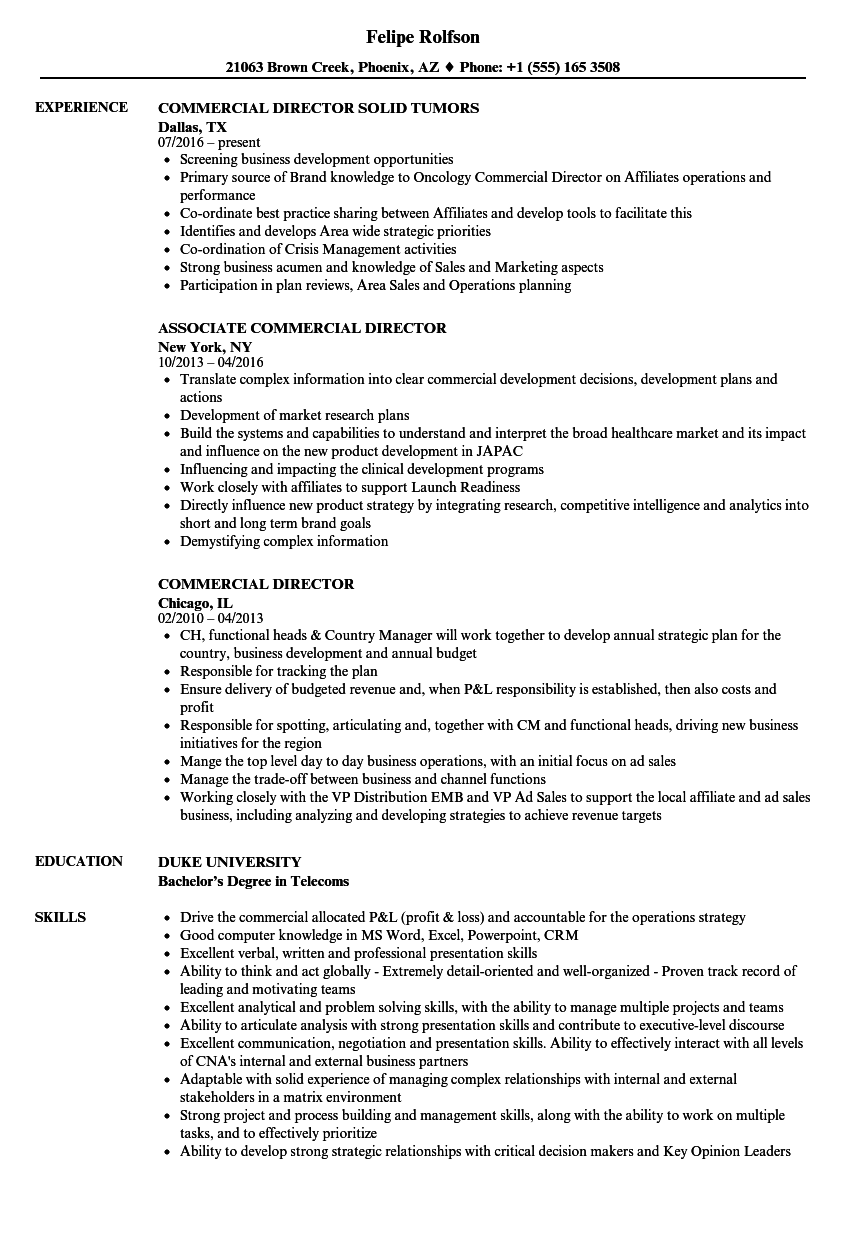 commercial director resume samples