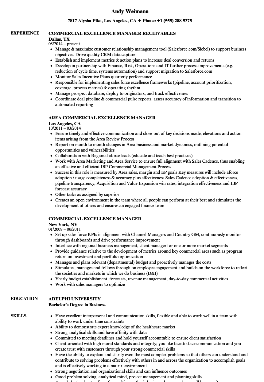 commercial excellence manager resume samples