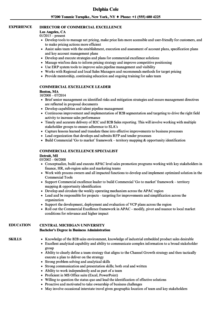 commercial excellence resume samples