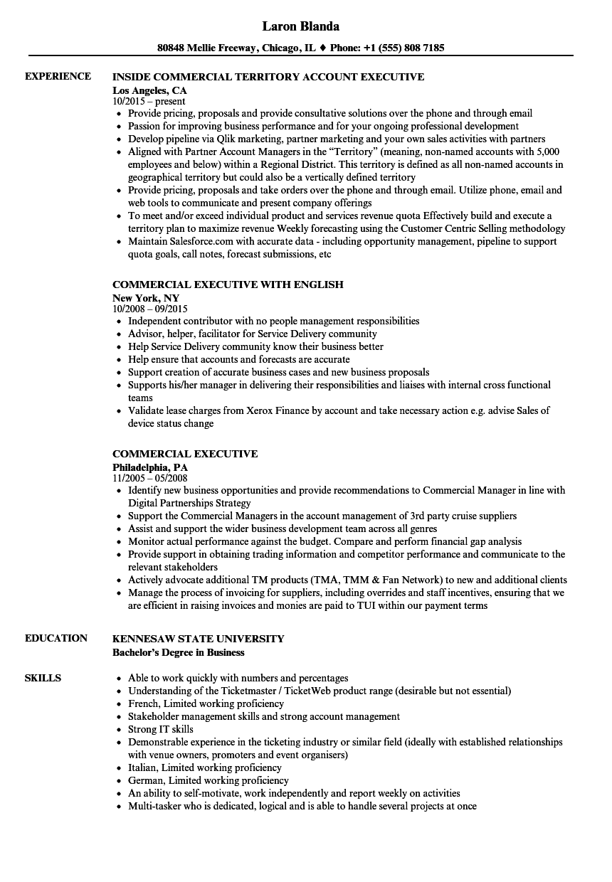 Commercial Executive Resume Samples | Velvet Jobs