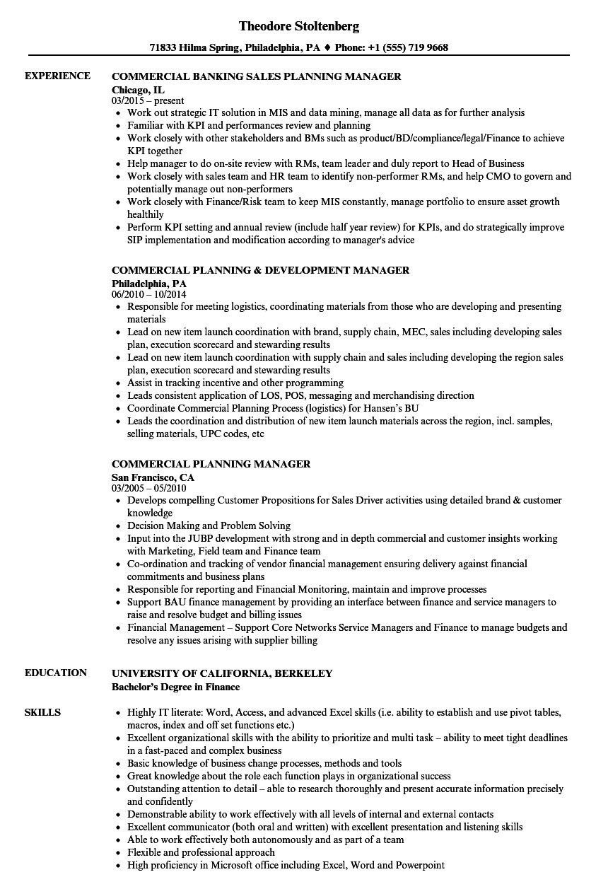 Commercial Planning Manager Resume Samples | Velvet Jobs